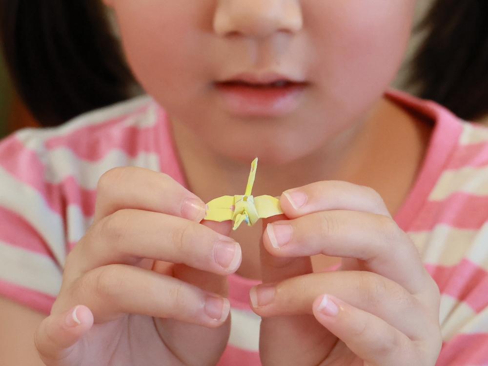かえで幼稚園写真館1