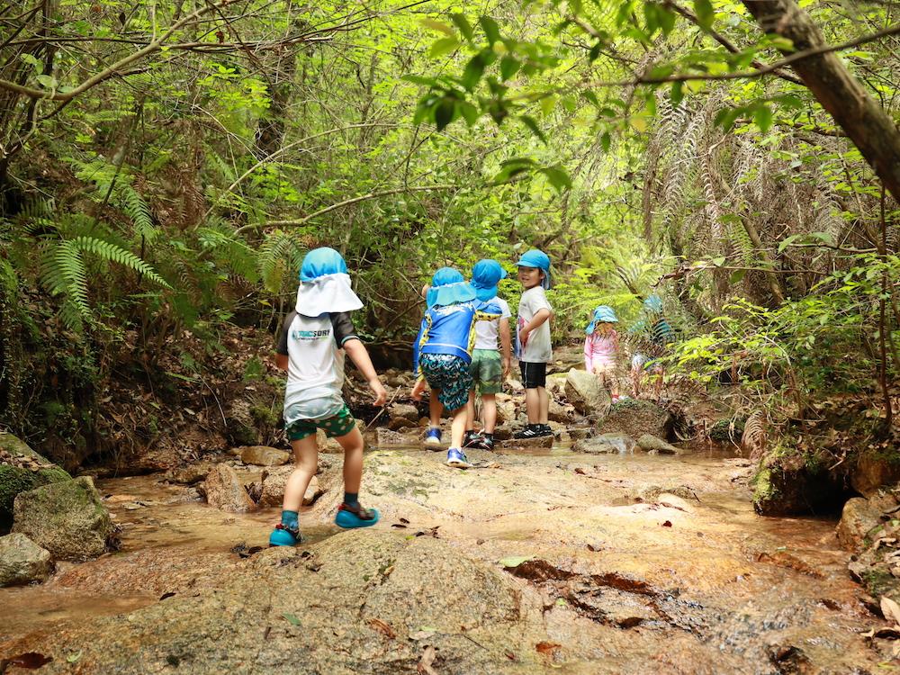 かえで幼稚園写真館2